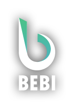Bebi Traffic Monetization We help you to monetize